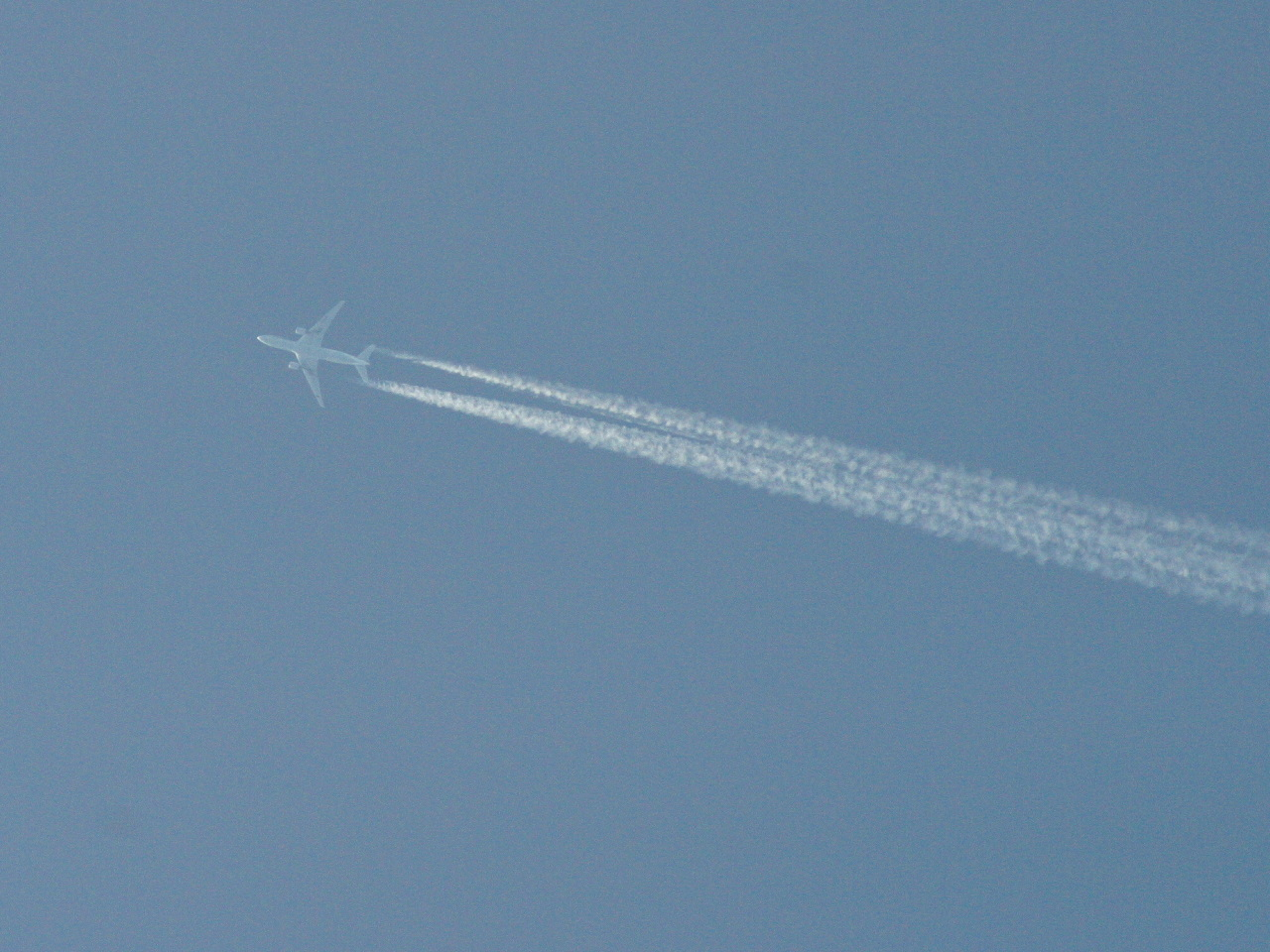飛行機の画像 p1_18